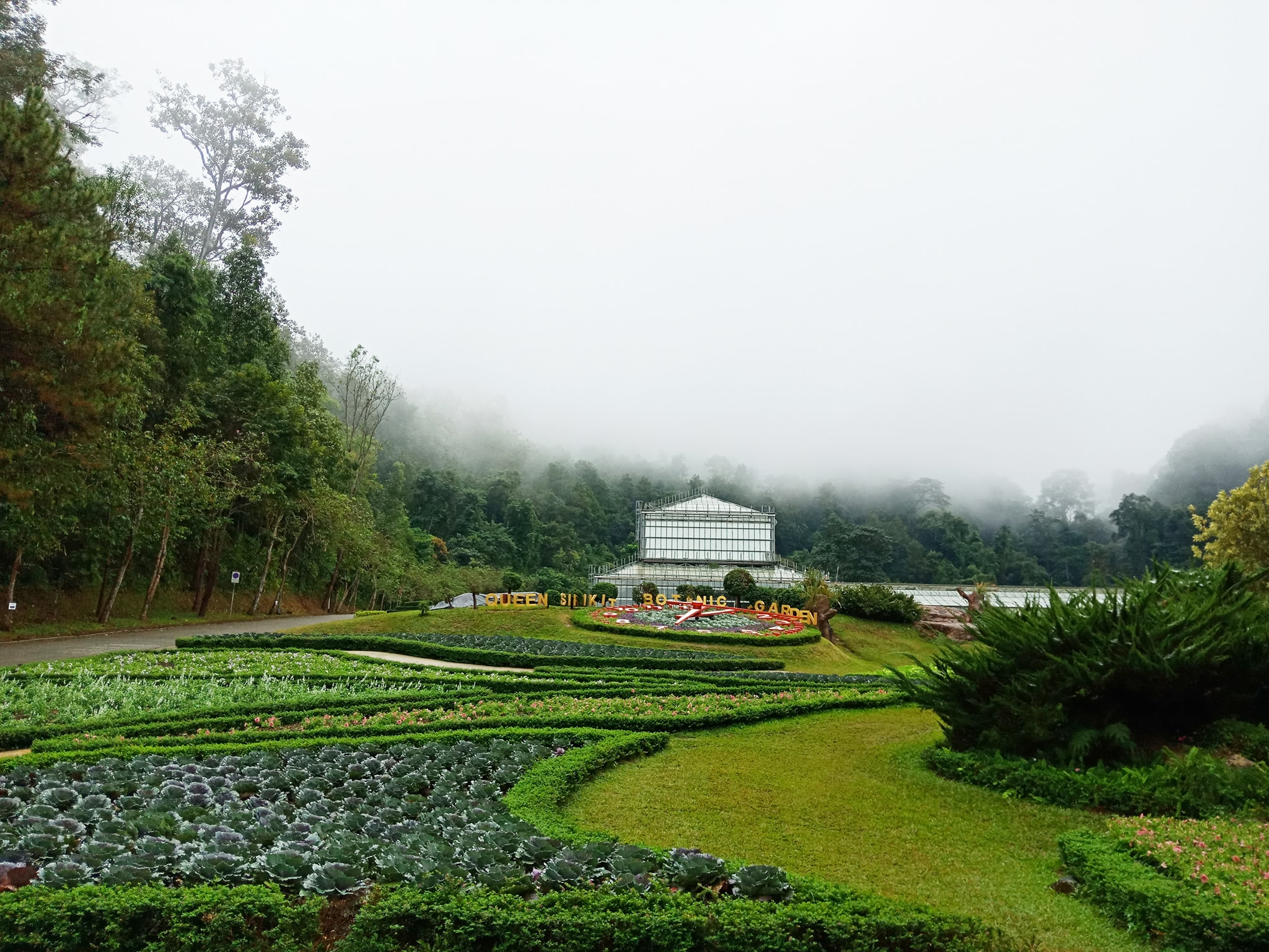 Queen Sirikit Botanical Garden: A Wonderful Escape to See The Magnificent Flora of Thailand